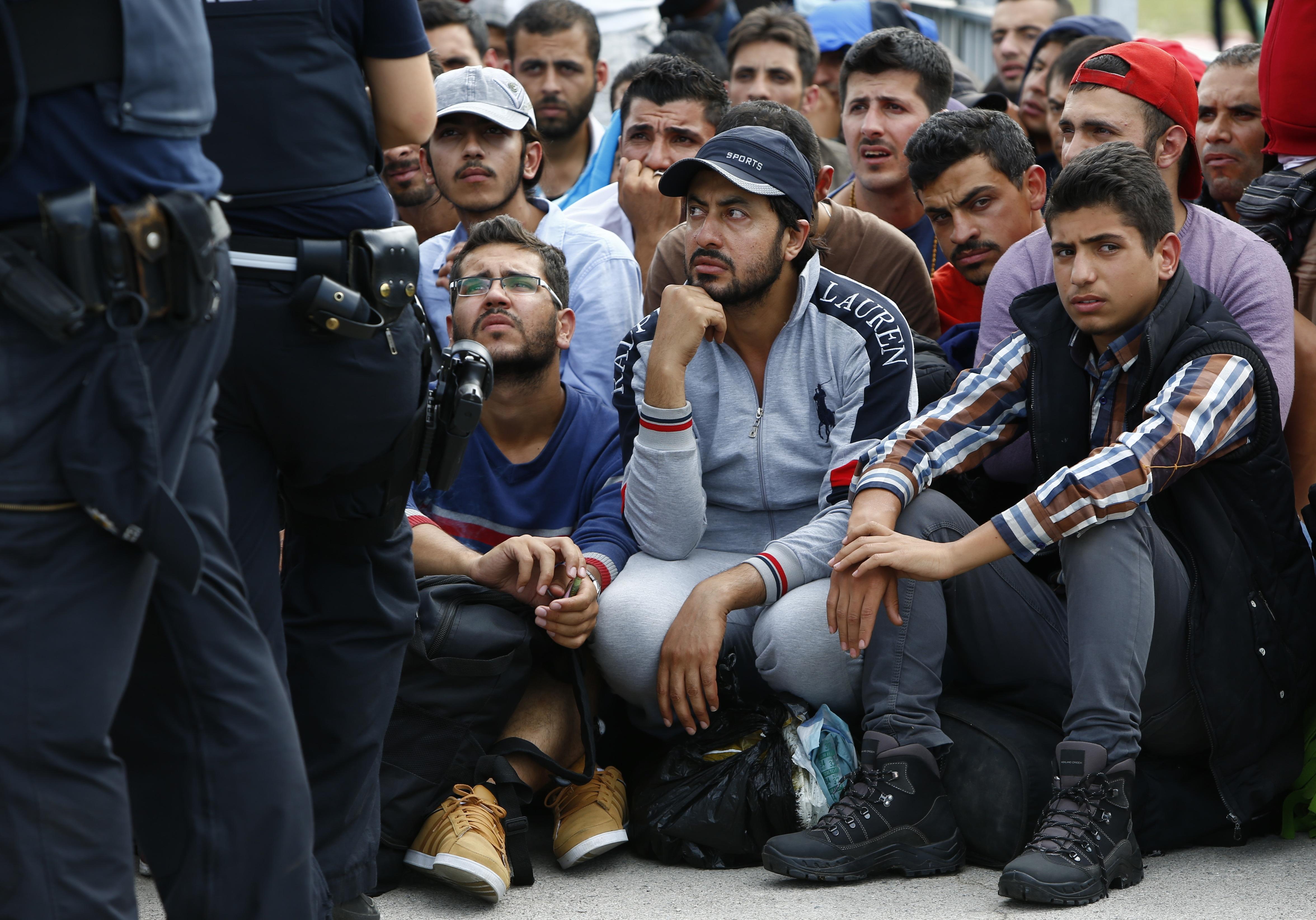 В Европе растет исламофобия: а вы чего ожидали?