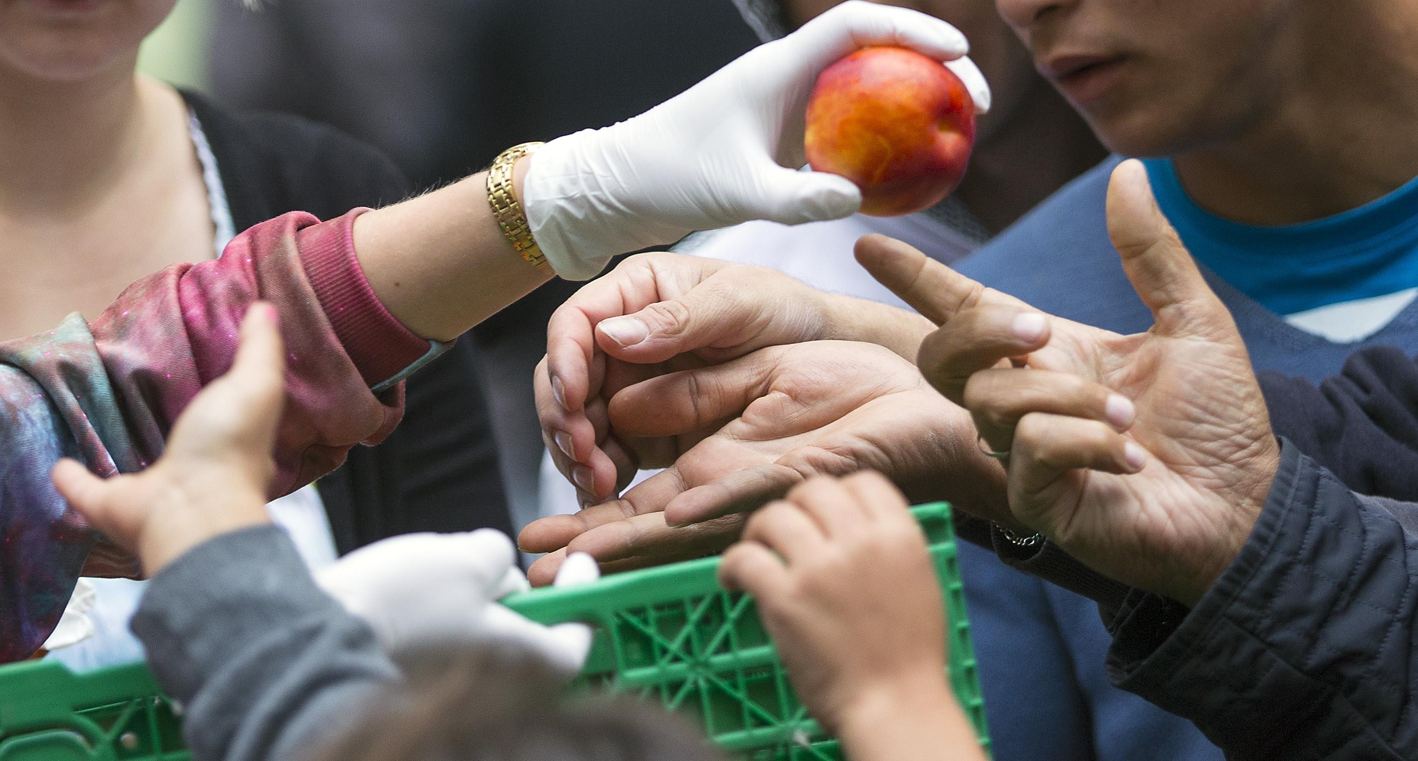 Фото овощей и фруктов в жопах у девушек 24 фотография