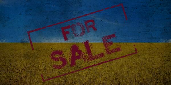 Кабмин обнародовал свои планы по началу продажи украинской земли