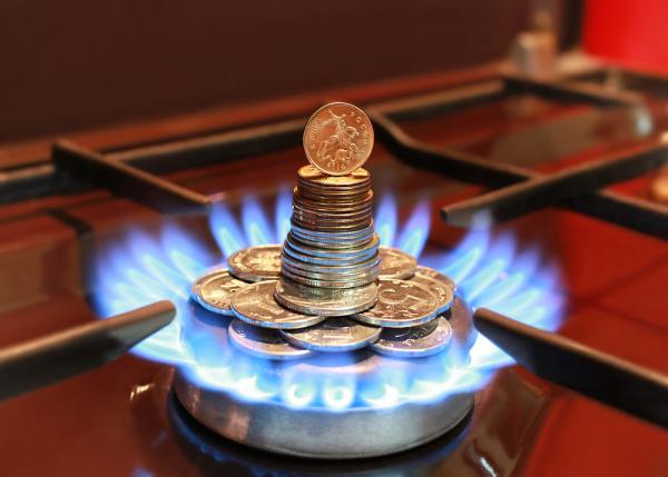 Лавров рассказал, кто принуждает Европу отказываться от дешевого российского газа