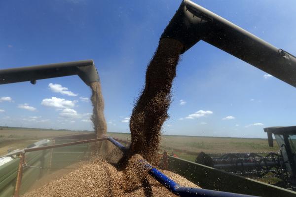 Медведчук: США желают видеть Украину аграрным придатком Запада