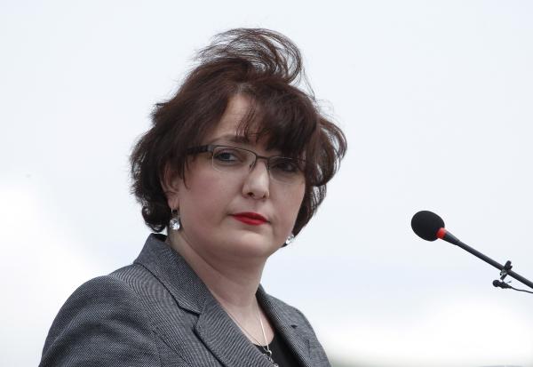 Министр обороны Грузии: ДАИШ и Россия - два главных вызова миру