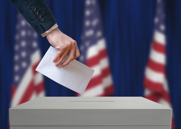 Наблюдатели ОБСЕ сообщили онарушениях при проведении выборов президента США