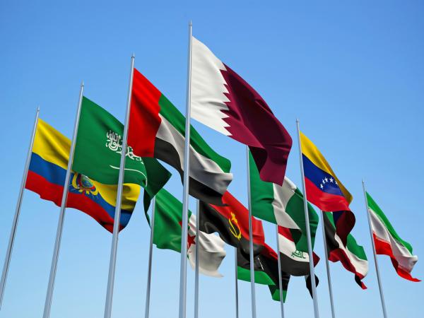 Генеральный секретарь ОПЕК: Отвстречи вАлжире нестоит ожидать каких-либо решений