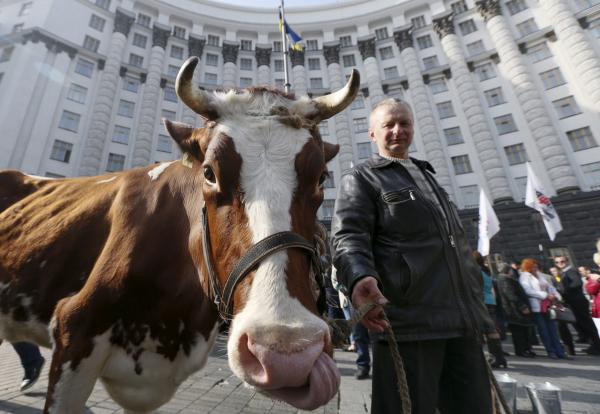 Украинские власти готовятся «отжимать» частную собственность