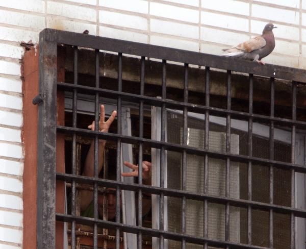 СМИ поведали омотивах напавшего налюдей в коммерческом центре вМинске