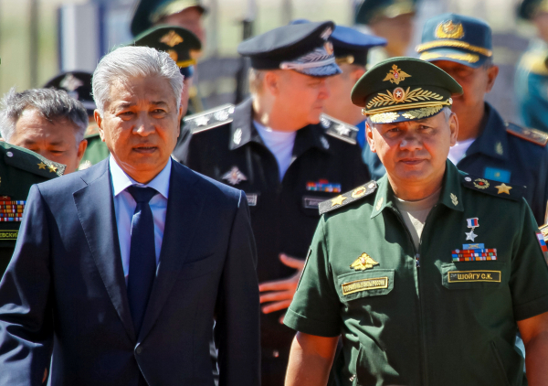 Шойгу обсудил сглавой минобороны Сербии перспективы военного сотрудничества