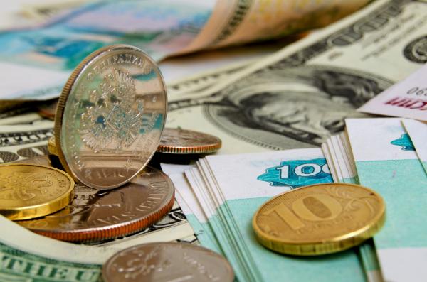 В Киеве подсчитали, сколько украинские гастарбайтеры вкладывают в российский бюджет