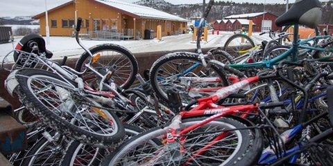 В Норвегии собирают велосипеды для отправки беженцев в Россию