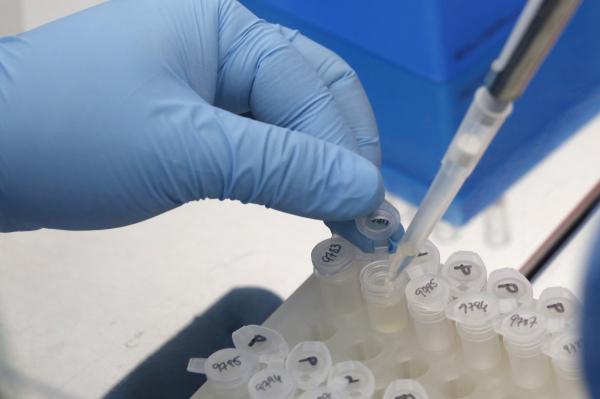 В России выявлен первый заболевший вирусом Зика