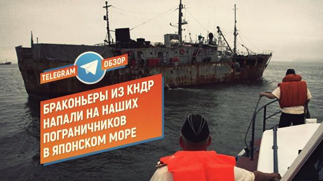 Браконьеры из КНДР напали на наших пограничников (Telegram.Обзор)