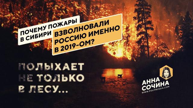 Почему пожары в Сибири взволновали Россию именно в 2019-ом? (Анна Сочина)